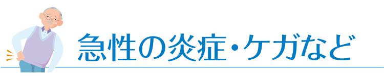 chiryo_midashi